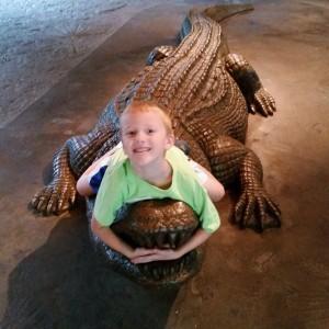 2015-10-22_Calligator