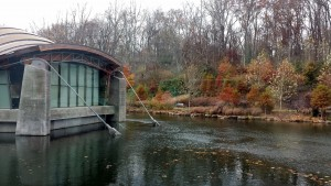 End_of_fall_at_Crystal_Bridges_002