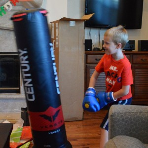 20160712_6945_Cpunchingbag