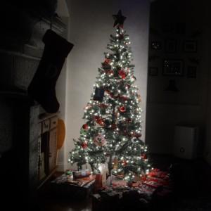 20161225_7254_tree